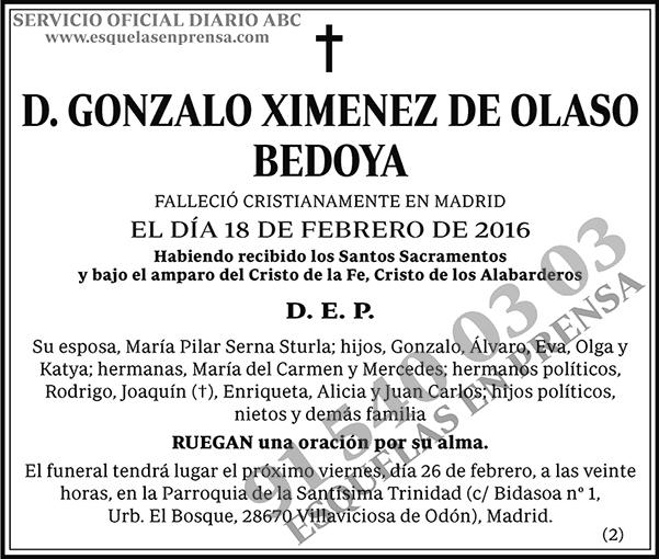 Gonzalo Ximenez de Olaso Bedoya